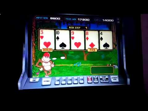 казино вулкан бесплатно по ставке 5000